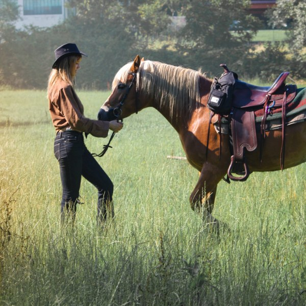 Web Development Service for Ranches, (US)